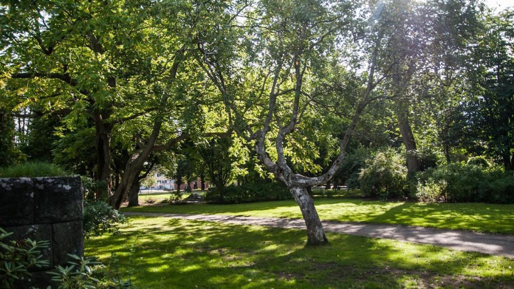 The School Garden of Jakobstad